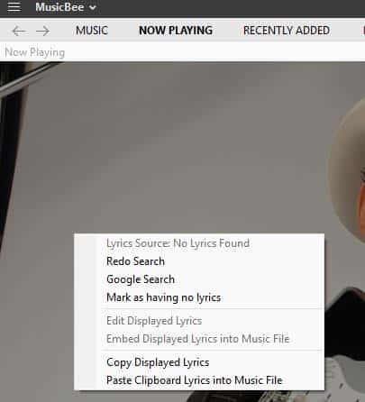 LyricsReloaded is a plugin for Musicbee that adds a lot of lyrics sources