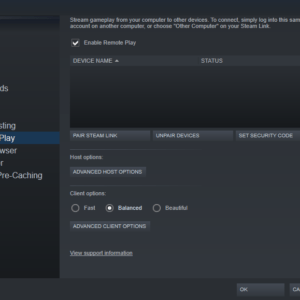 steam remote play settings