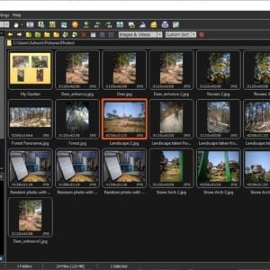 FastStone Image Viewer dark theme