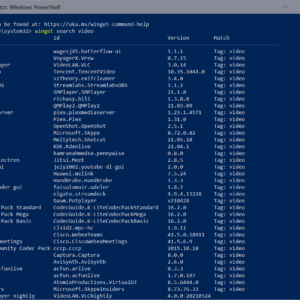 windows package manager 1.0 winget